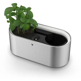 Ambient Herbs @ Home